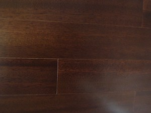 Begonia-Wood